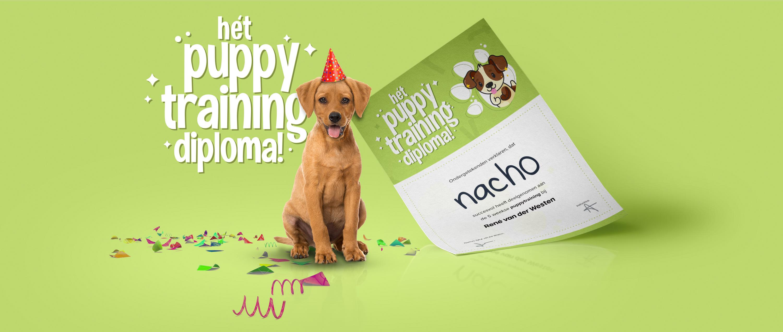 puppy-diploma-rvdw